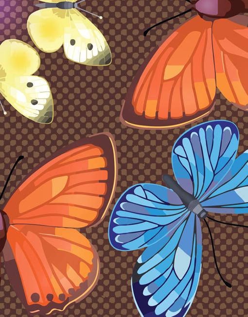 Butterfly Kaleidoscope Autumn macro
