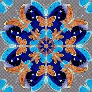 Butterfly Kaleidoscope Cobalt flat